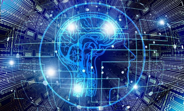 2D design of brain