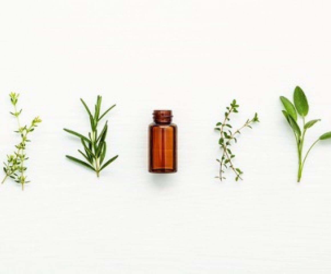 A row of plant-based alternative therapies